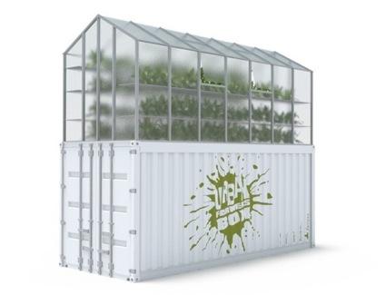 ueberland.urban .farmers.box 2 Vom Autofahren zum Gemüseernten