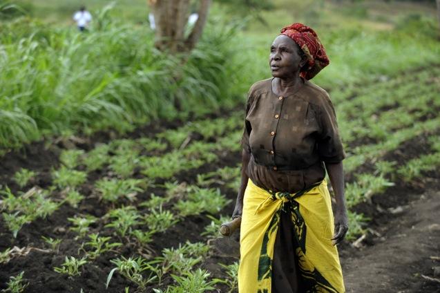 Welt-Landfrauentag