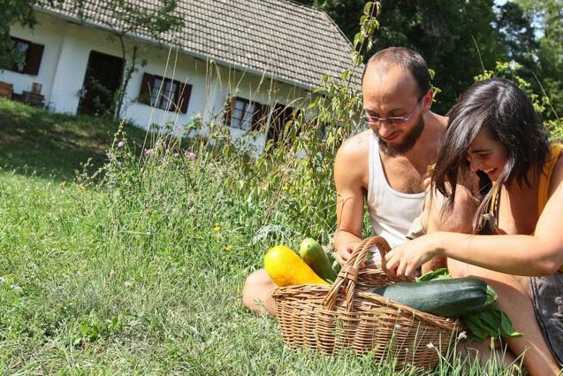 Selbstversorger-Projekt Lisa und Michael in der Wiese