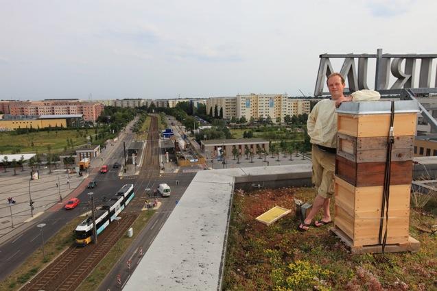 Berlin summt auf den Dächern der Bundeshauptstadt