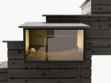 Penthouse für City-Hühner - Einblick