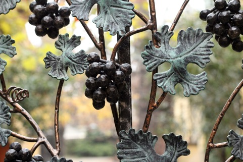Robert Steidl im Gespräch über veganen Wein