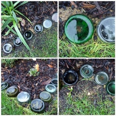 ueberland.glass-bottle-garden-border