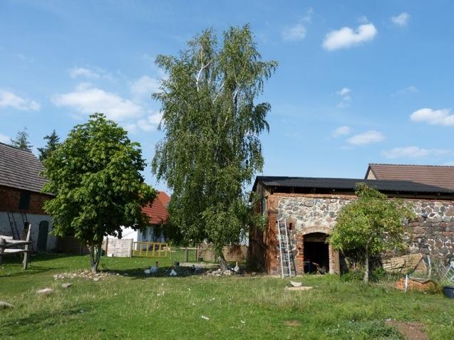 Blick auf den Ökohof Fläming: Die Feldsteinscheune ist das älteste Gebäude im Ort.