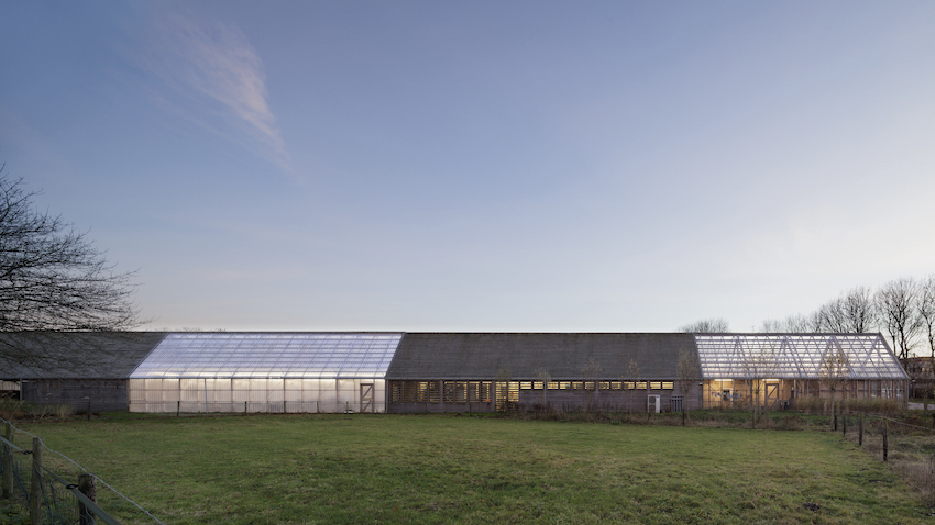 Praktijkschool Da Vinci College, ontwerp RO&AD architecten