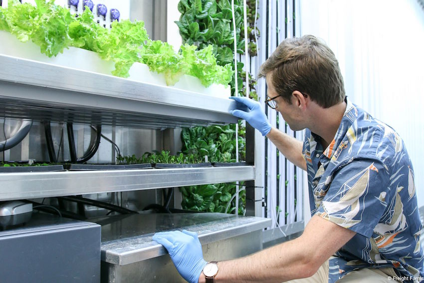 (2) Startups: Indoor-Farm im Frachtcontainer