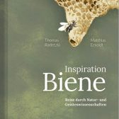 Weltbienentag-Inspiration-Biene-Cover-2