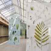Poetischer Avantgarden im Botanischen Garten