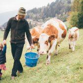 Bauer-mit-Kühen-und-Kind